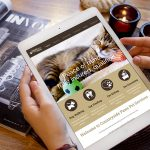 Website Design - Countryside Pets Tablet View